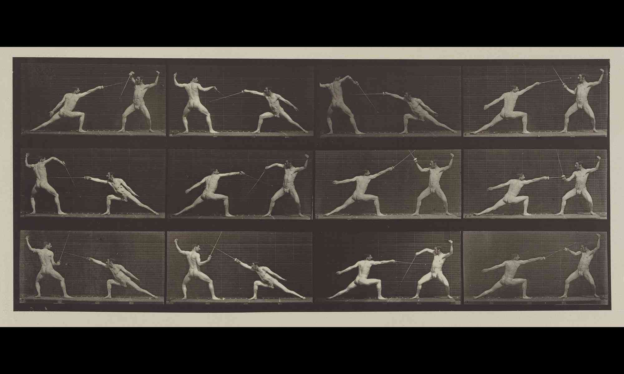 Muybridge photograph  - Fencing
