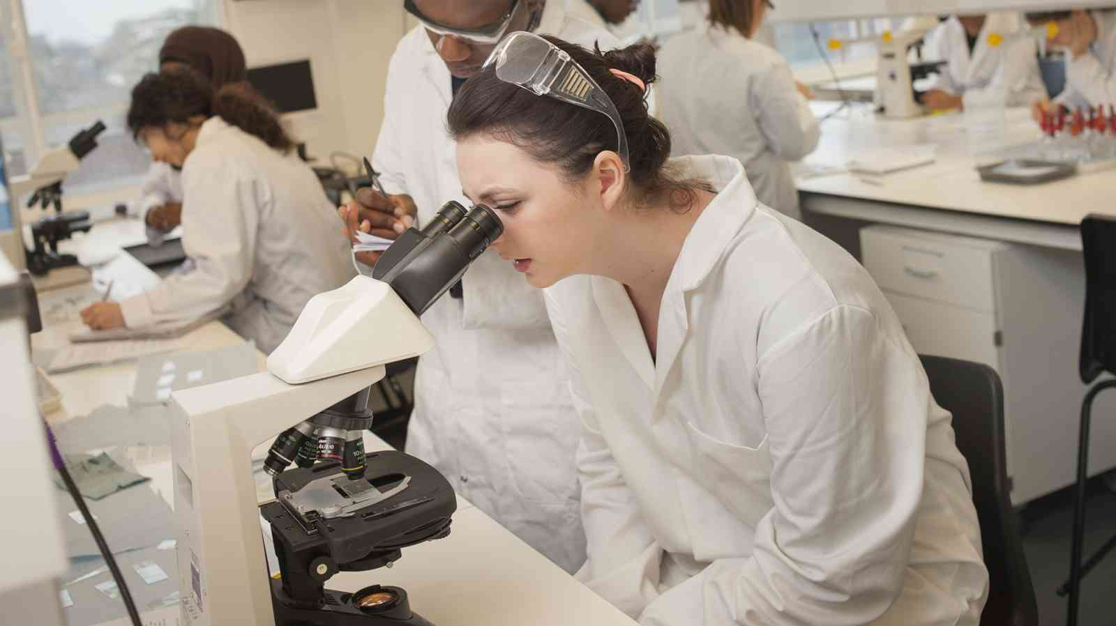 Biomedical Science BSc(Hons) degree course - London undergraduate