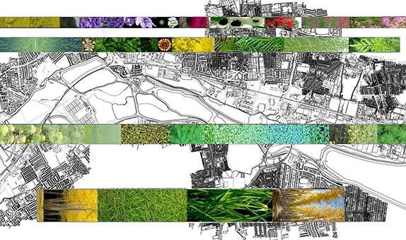 Landscape Architecture PgDip (LI accredited)