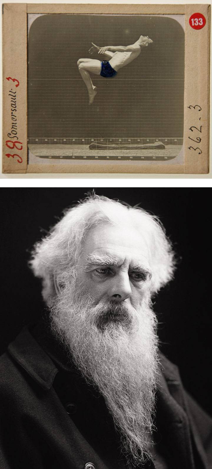 Eadweard Muybridge in Kingston, 1894-1904