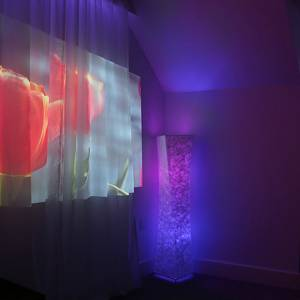 Kingston University expert designs new sensory room for local care home residents living with dementia