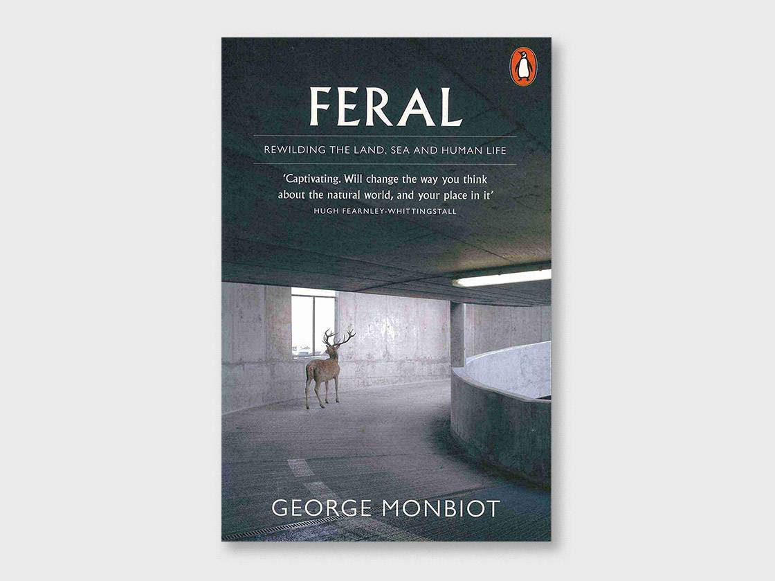 Feral by George Monbiot