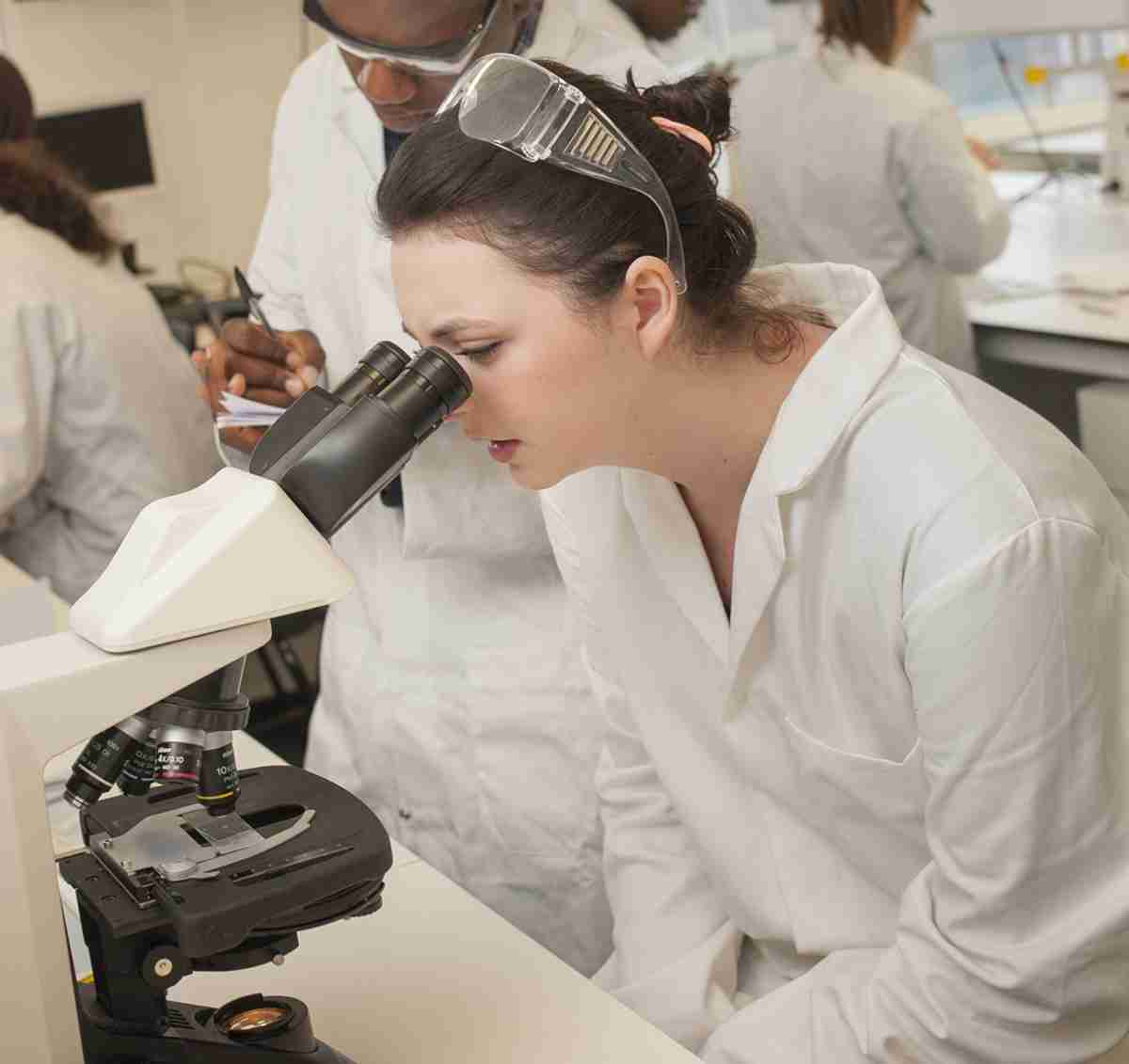 Biological Sciences BSc(Hons) degree course - London