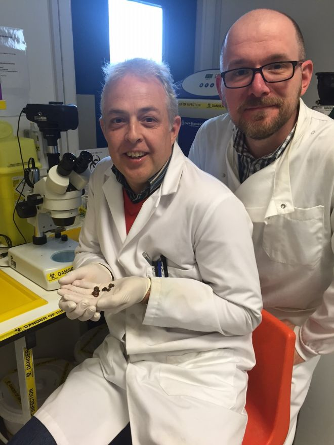 Research by Professor Tony Walker (left) and Dr Scott Lawton could help control and eliminate a deadly parasitic disease spread by snails in tropical waters.
