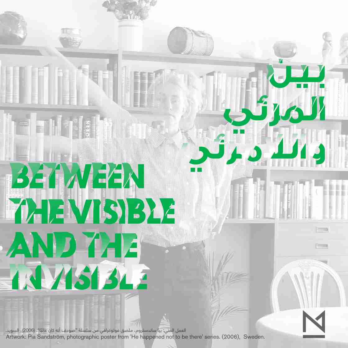 Between the Visible and Invisible