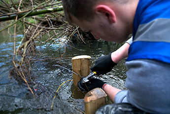The Hogsmill River project is the University's largest biodiversity volunteer project to date. Picture by Oliver Lafçı