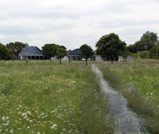 Helen Goodwin's managed water meadow will also be on display during the festival