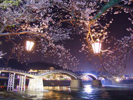 The Kintaikyo Bridge in western Japan is often photographed when the cherry blossoms are in bloom. Image courtesy of the Kintai World Heritage Promotion Office
