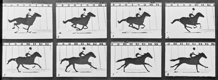 Eadweard Muybridge - 'The Horse in Motion' courtesy Kingston Museum and Heritage Service, 2010