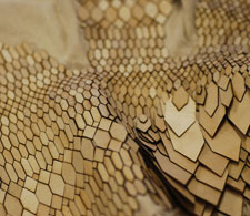 Stefanie Nieuwenhuyse has created a eco-friendly material that mimics the look and feel of snakeskin.