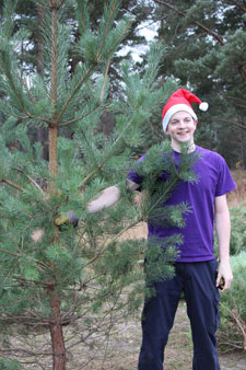 Getting into the festive spirit, student Derryn Lovett with one of the carefully chopped Christmas trees.